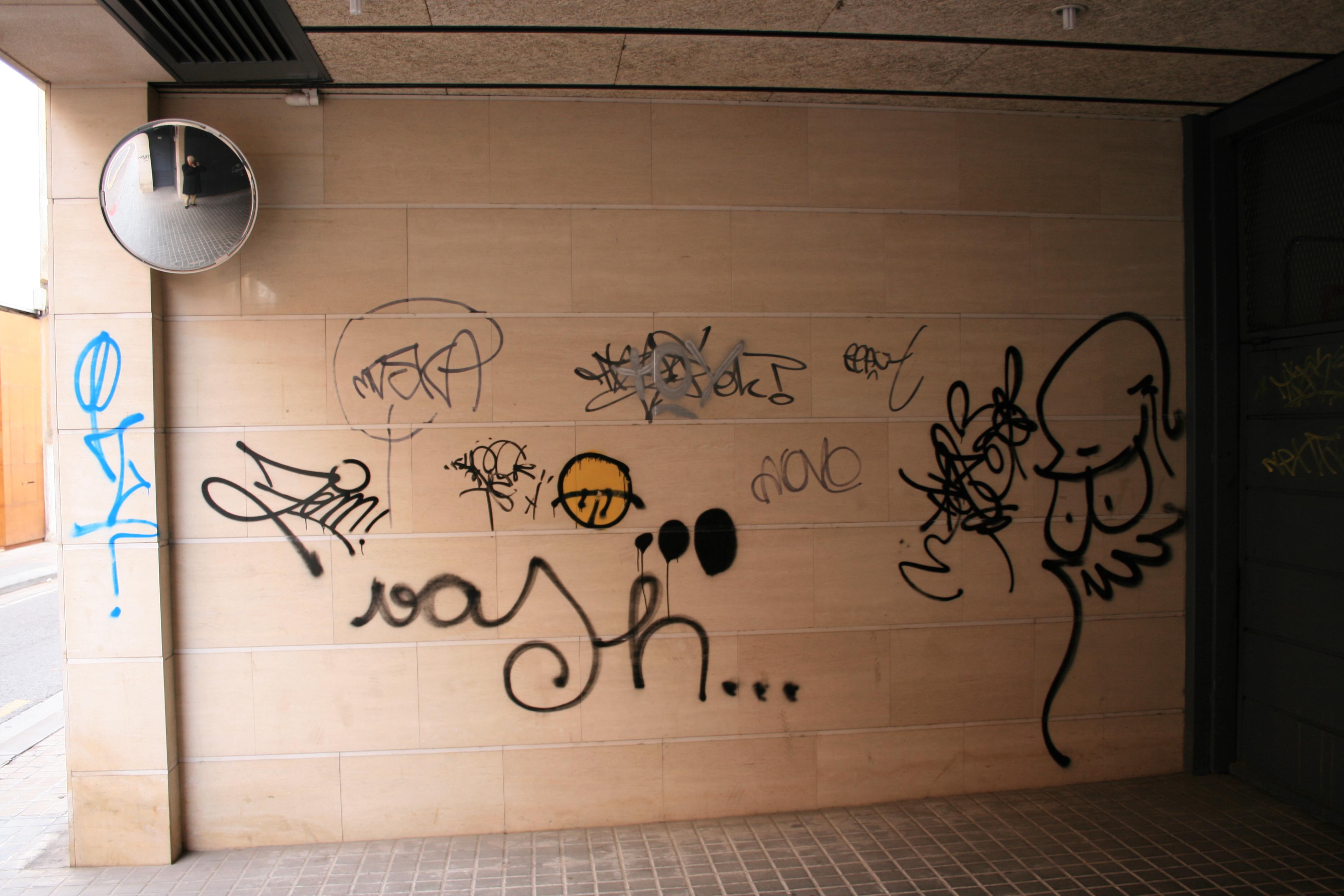Dassgraff actúa sobre cualquier superficie para eliminar los graffitis